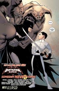 Batman Robin-Zone-017